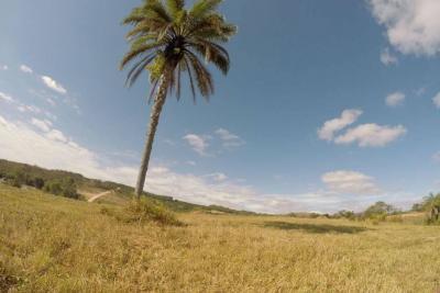 Terreno (acima de 1.000 m²) César de Pina Tiradentes-MG