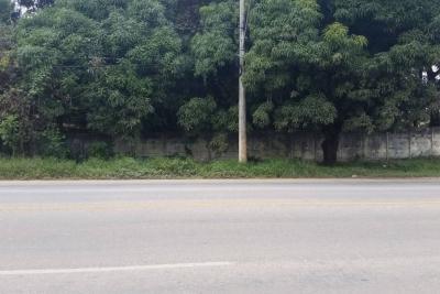Terreno (acima de 1.000 m²) Colônia do Marçal São João Del Rei