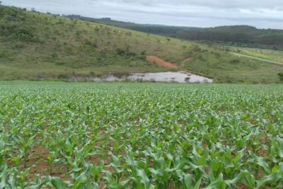 Terreno (acima de 1.000 m²) Zona Rural Ritápolis-MG