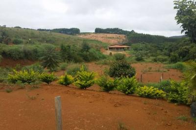 Terreno (acima de 1.000 m²) Zona Rural Coronel Xavier Chaves